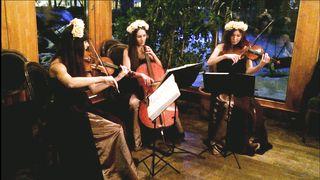 Muse Time is running out - скрипки и виолончель Violin Group DOLLS(струнное трио)