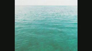 Sasha Lopez feat. Ale Blake & Evan - Feeling Good
