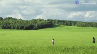 The Price of Memories - Как бабочки