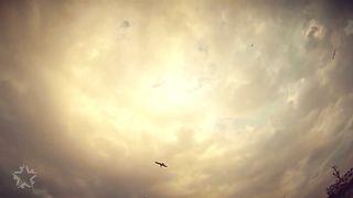 Mc Motoman - Птицей лететь