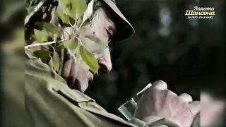 Александр Розенбаум - Черный тюльпан