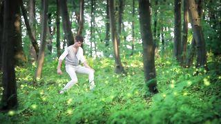 Влад Дарвин - Зелена фея