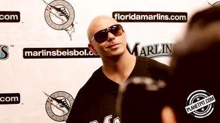 Pitbull - 305 Till I Die...