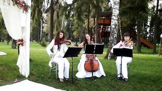 Струнное трио Violin Group DOLLS - Love's Theme(музыканты на свадьбу)